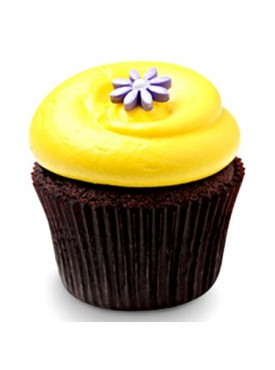 6 Sunshine Chocolate Cupcakes