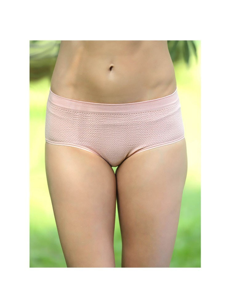 20034422eb083 Shyle Nude Colored Everyday Panty