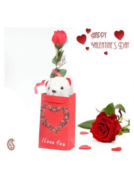 Cute Little Teddy with Free Artificial Rose