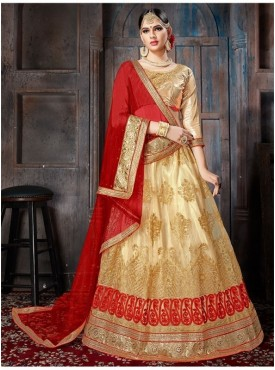 Aasvaa Chiku Color NET Designer Semi Stitched Lehenga Choli